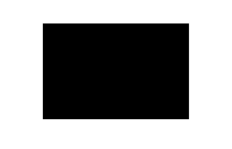 Fundamente